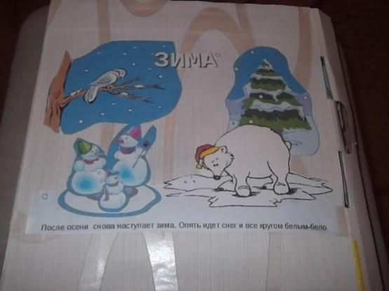 Картинки зверей зимой в большом формате